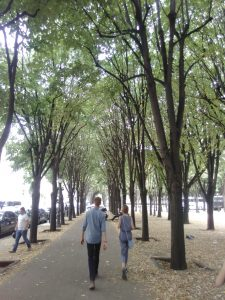 Two children walking down a tree-lined alley in a Paris park.