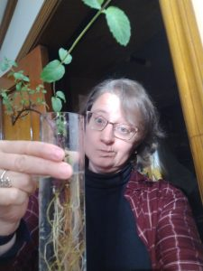 Me holding a vase with mint rooting in it.